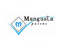 Mangusta Ltd