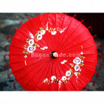 Beautiful Color of Pathein Parasol