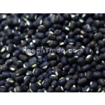 Black Matpe (Urad) Bean in Myanmar