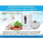 Beyond Food Junction Detoxifying Unit