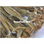 "Dried Fish ""ArrPhalChauk"" in Myanmar"