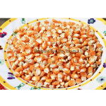 Myanmar Corn Maize Grain