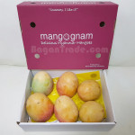 R2E2 Mangoes from Myanmar