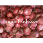Fresh Raw Onion in Myanmar