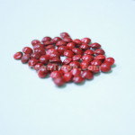 Adenanthera Pavonina seeds
