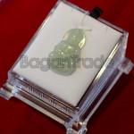 Guan Yin Pendant with Ice Green Jade