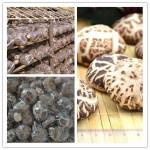 Dried Shiitake Mushroom ,Black fungus