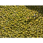 3.25 Up Green Mung Bean from Myanmar