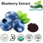 Blueberry Powder ,wild blueberry extract factory ,wholesale blueberry extract